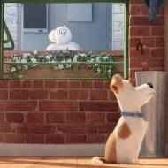 Comme des bêtes / The Secret Life of Pets - ILLUMINATION ENTERTAINMENT, ILLUMINATION MAC GUFF, UNIVERSAL PICTURES INTERNATIONAL